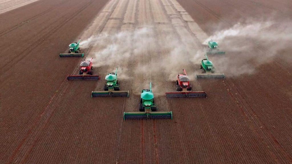 grupo-morena-agricultura1